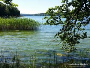 150702_Stechlinsee_7